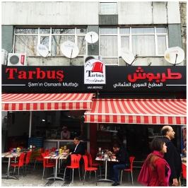 tarbus03